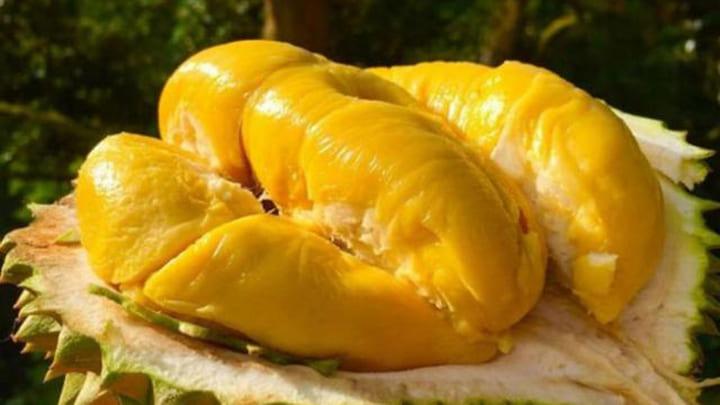 Ăn sầu riêng có béo không còn tùy thuộc vào cách ăn của bạn