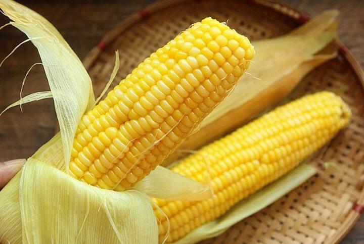 Bắp ngô có giá trị dinh dưỡng rất cao, tốt cho sức khỏe con người