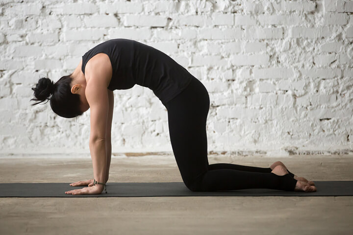 Bài tập Yoga con mèo giúp bụng hóp eo thon