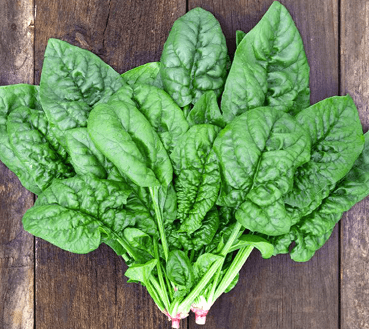 Bạn có thể làm một lỵ nước ép rau chân vịt giúp giảm cân, ngừa bệnh, làm đẹp da