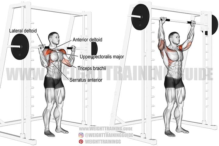 Bạn cần chú ý mức tạ có thể nâng lên, tránh nâng tạ quá nặng vượt sức mình