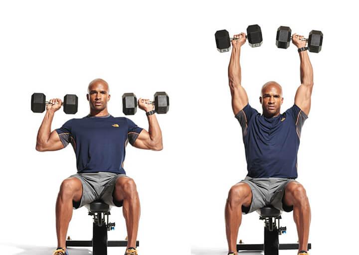 Ngồi đẩy tạ đơn Seated Dumbbell Shoulder Press