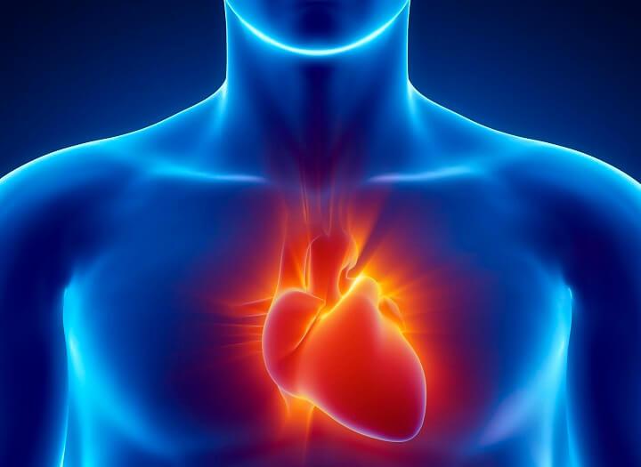 Đi bộ thường xuyên giúp hệ tim mạch của bạn cải thiện rõ rệt
