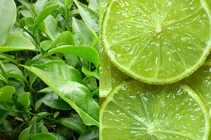 Cách giảm mỡ bụng với chanh kết hợp với trà xanh là phương pháp an toàn, hiệu quả