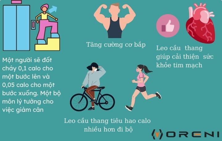 Leo cầu thang mang lại nhiều lợi ích tuyệt vời cho sức khỏe