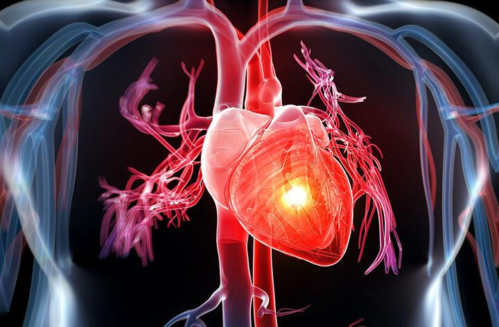 Nhảy dây có tác dụng giúp tim hoạt động tốt hơn, giảm đột quỵ.