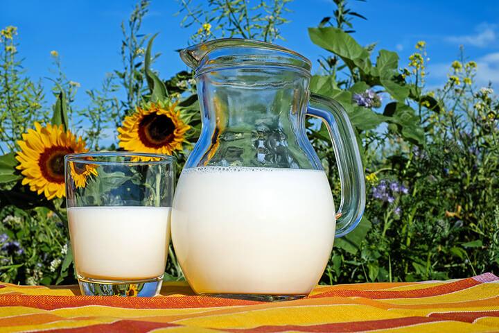 Sữa tươi không đường có nhiều chất dinh dưỡng tốt cho cơ thể