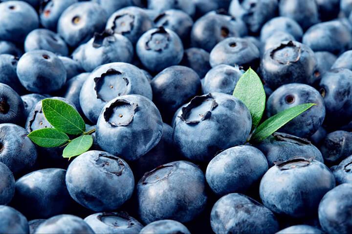 Quả việt quất hay được làm thành sinh tố thơm ngon, tốt cho sức khỏe