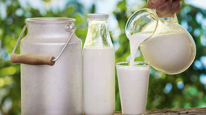 Sữa tươi không đường về cơ bản giống sữa tươi có đường ở hàm lượng dinh dưỡng