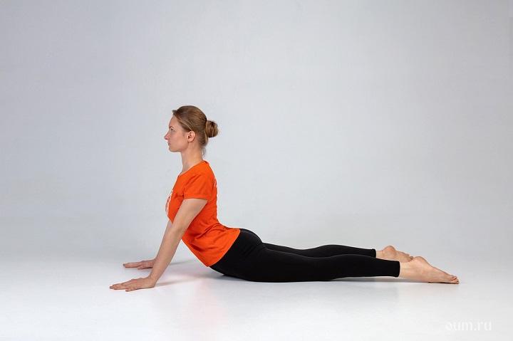 Rắn hổ mang là một trong những động tác cơ bản trong Yoga